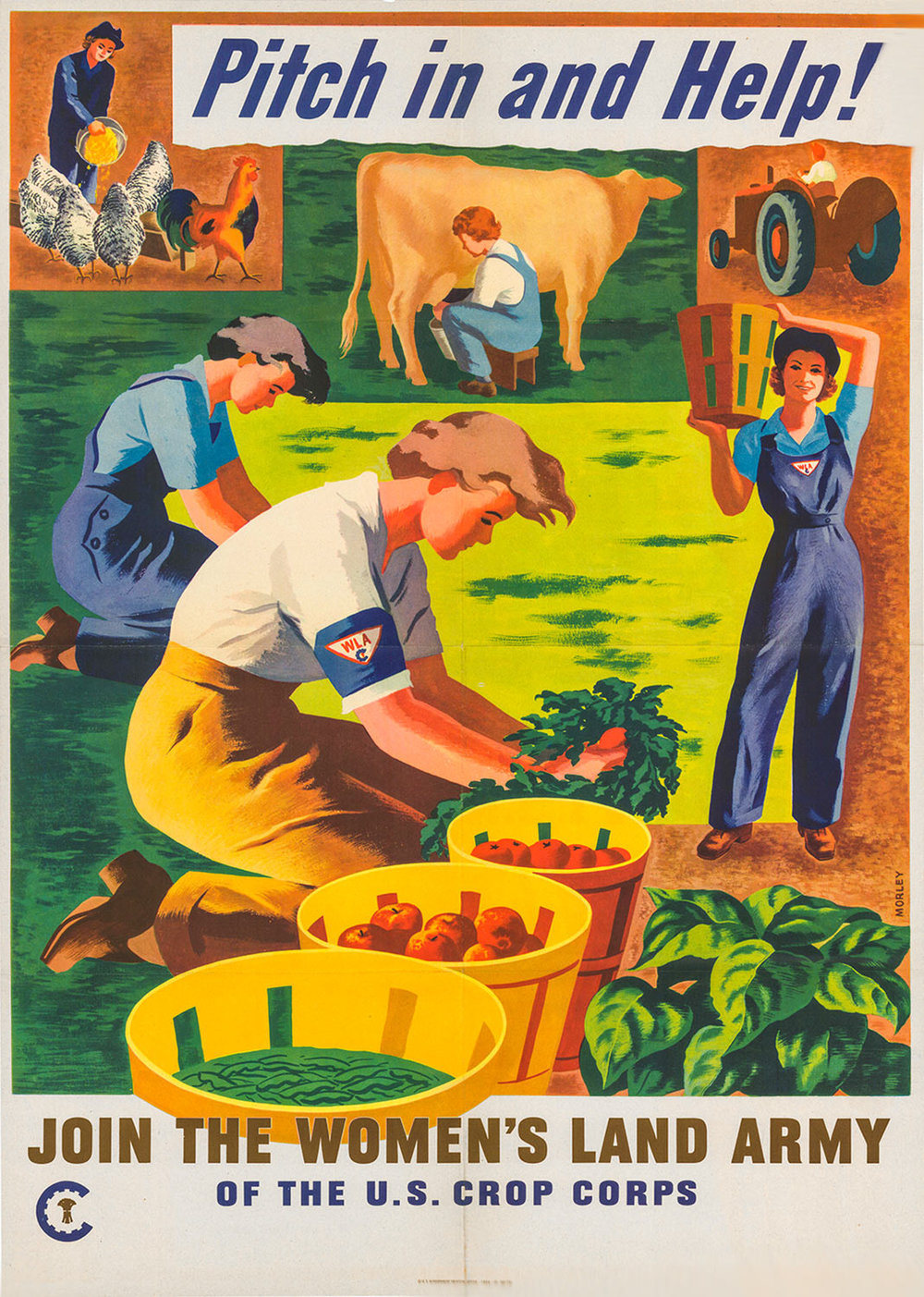 Vintage-Agriculture-Advertising-Women's-Land-Army-Ad-Poster.jpg