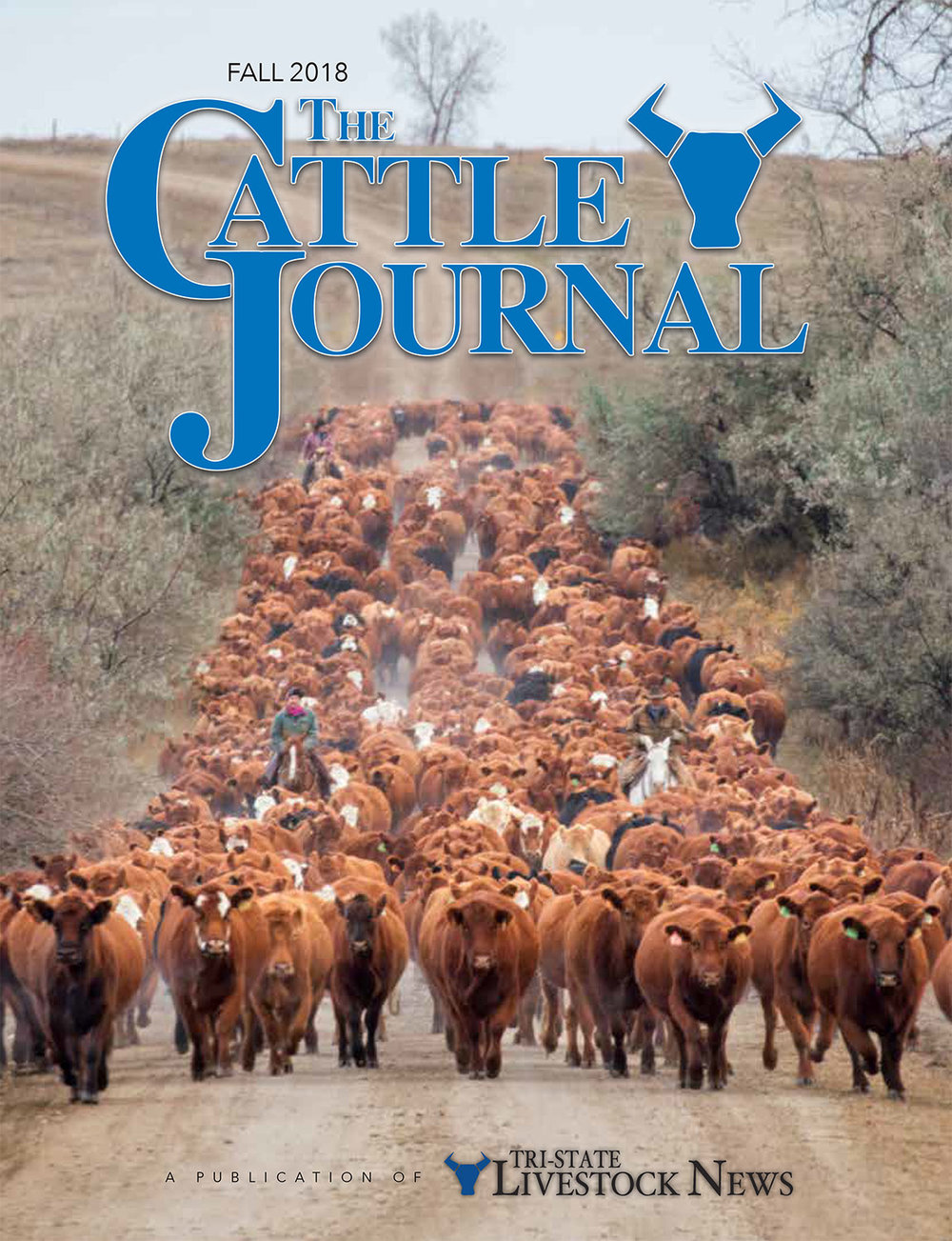 The Cattle Journal