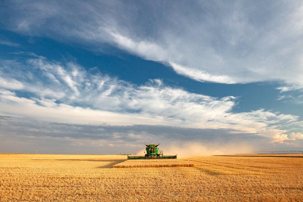 Harvest Centered