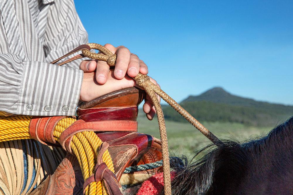 Horseman's Hands
