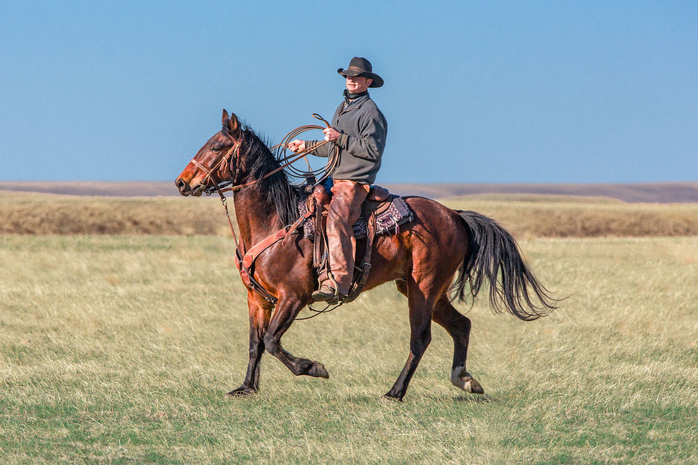 Great Plains Rider