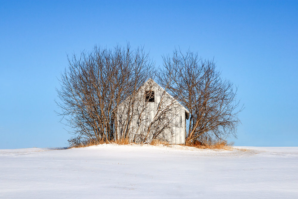 Nature's Shed