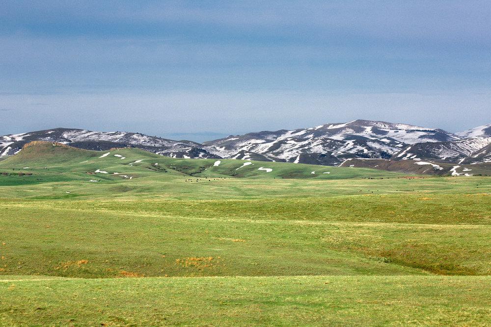 Gordon Ranch Landscape