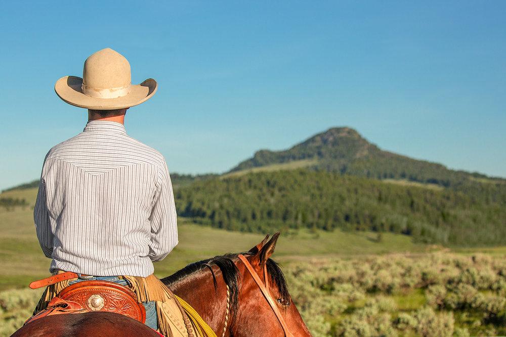 Cowboy Back