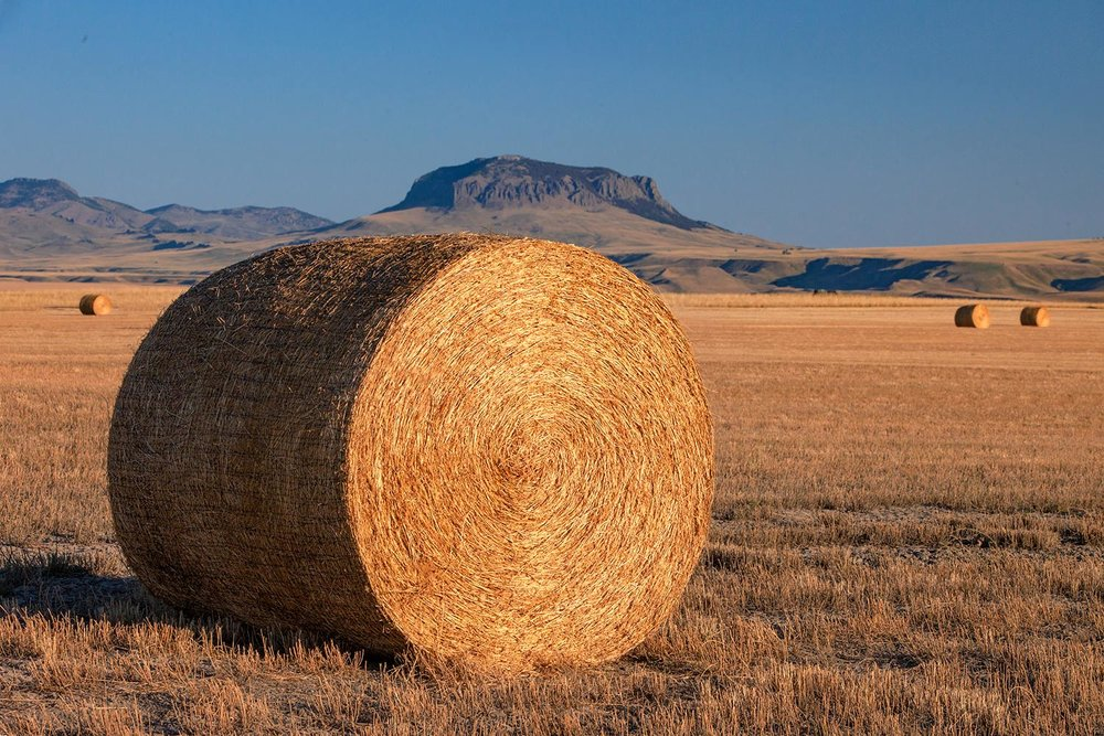 Round Bale and Butte