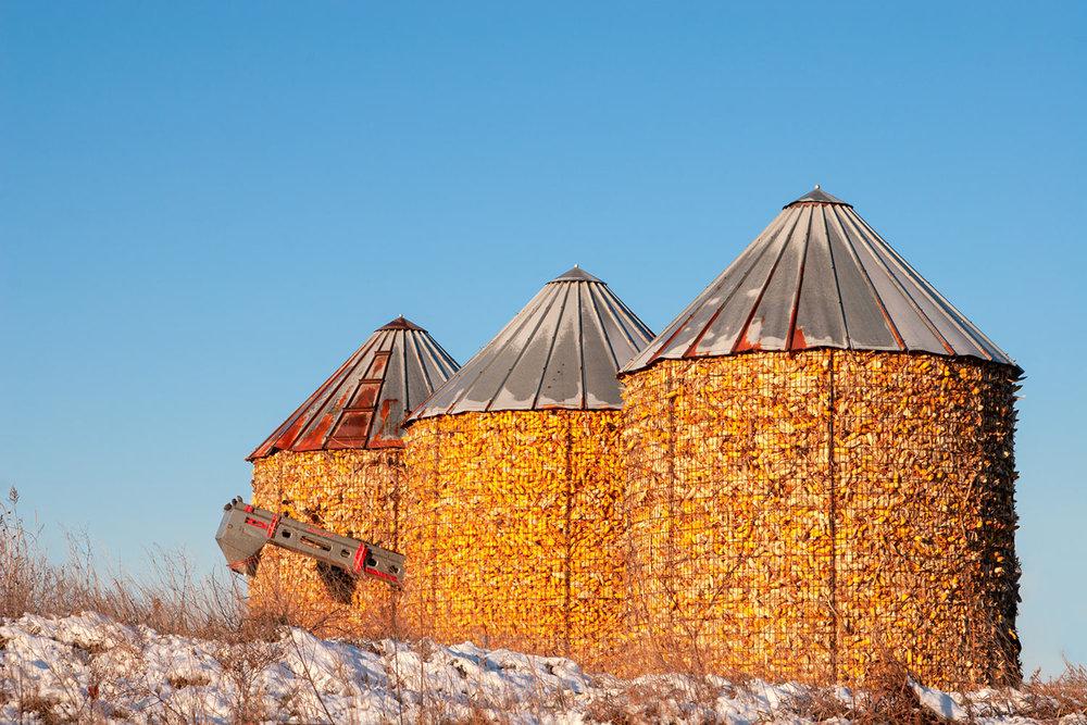 Full Corn Cribs