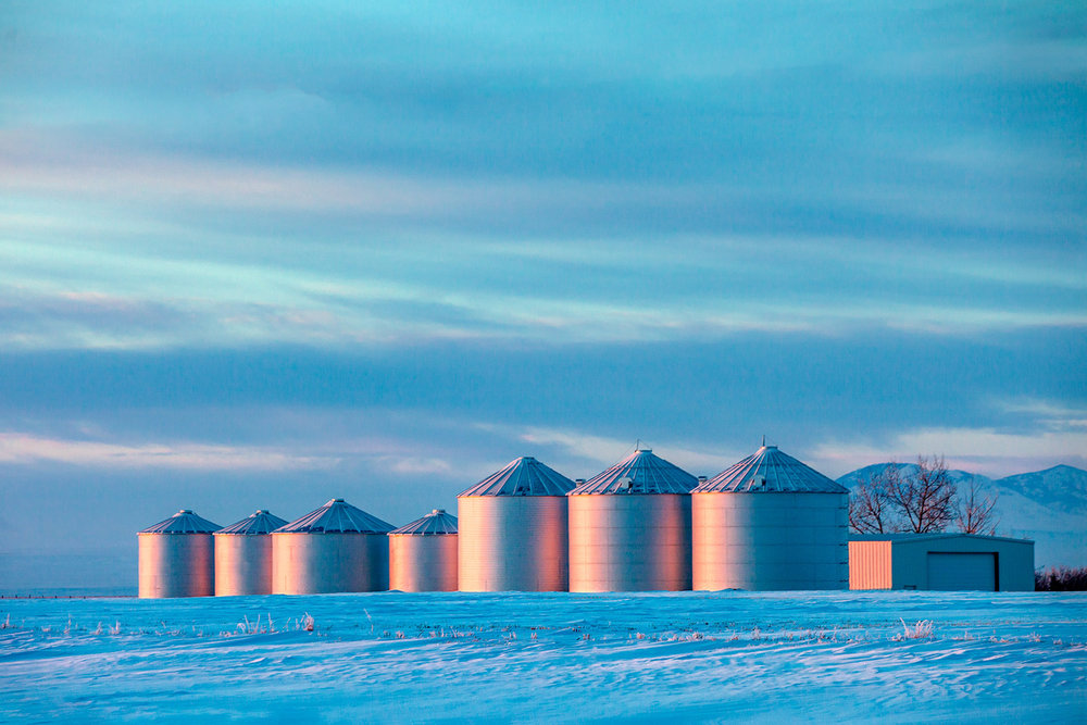 A row of grain bins catch the last light on a very cold day near Inverness, Montana.  → Buy a Print  or  License Photo