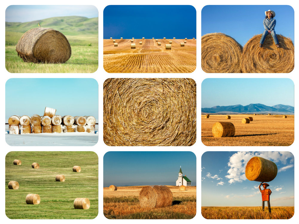 Collection of Photos of Round Bales Both Hay and Straw