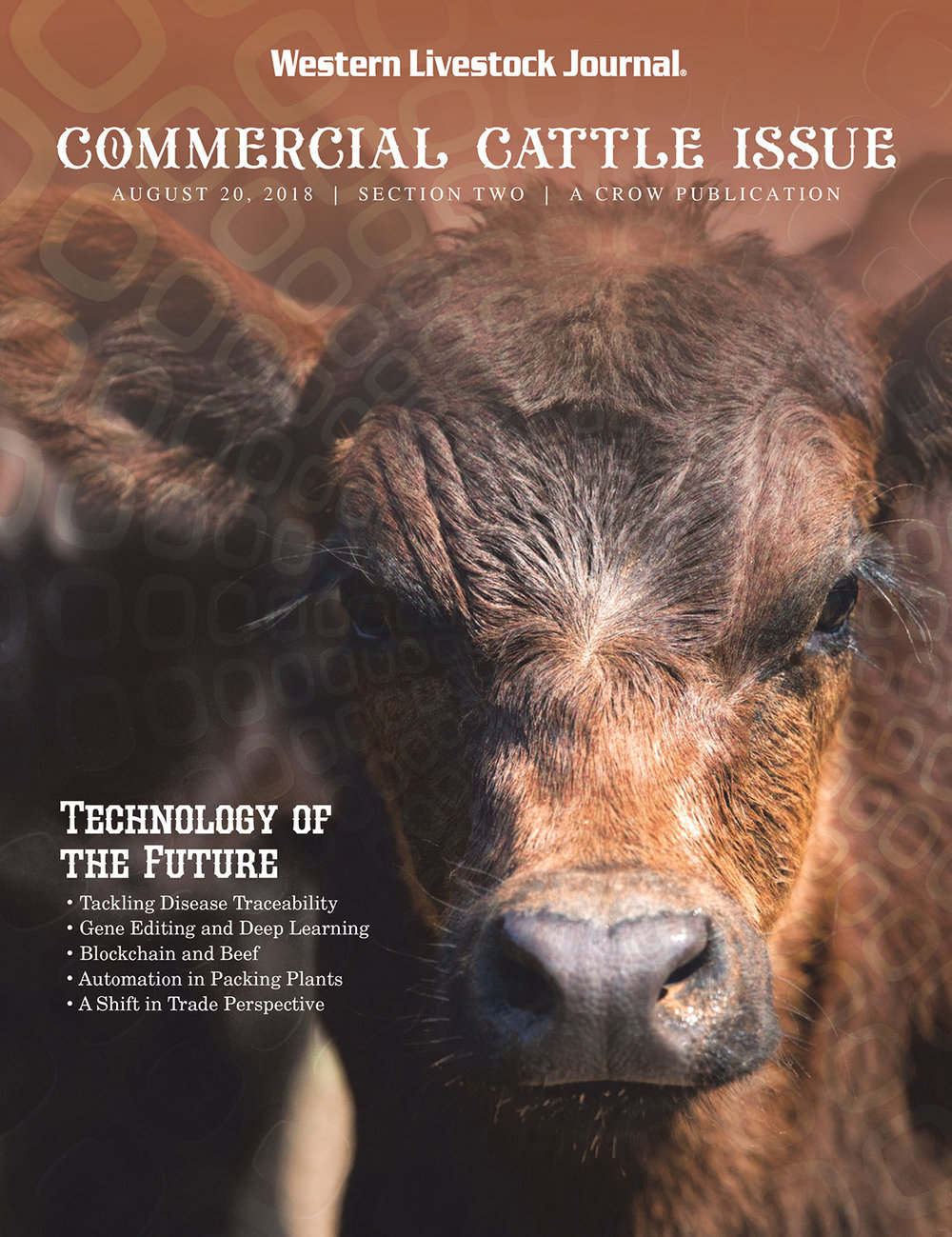 Published Cattle Stock Images on Cover of Western Livestock Journal