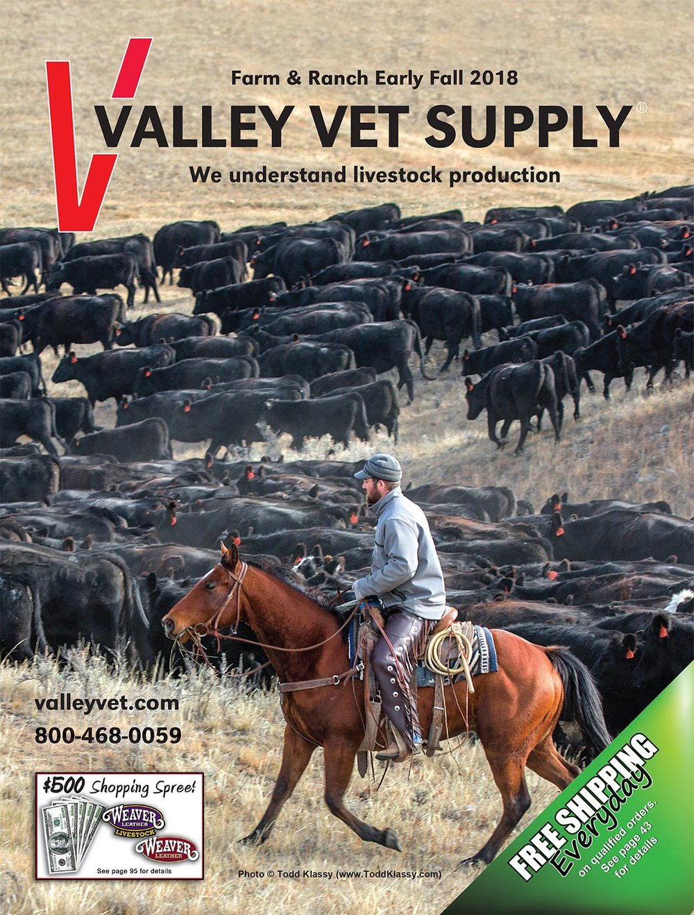 Stock Images of Black Angus Cattle on Cover of Valley Vet Supply Catalog