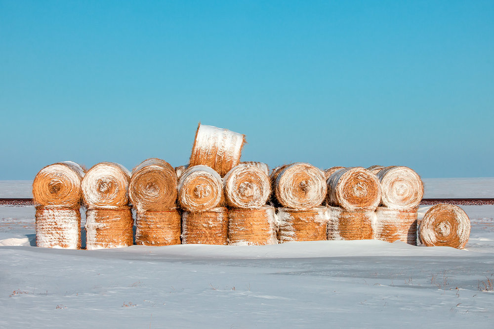 Frosted Wheats