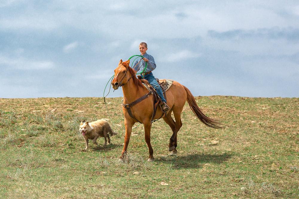 Boy, Horse, and Dog