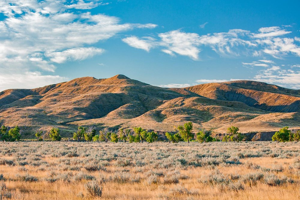 Arrow Creek Hills