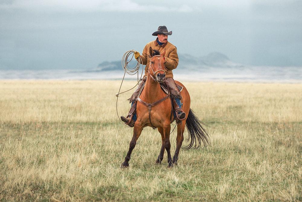 Turning Horse
