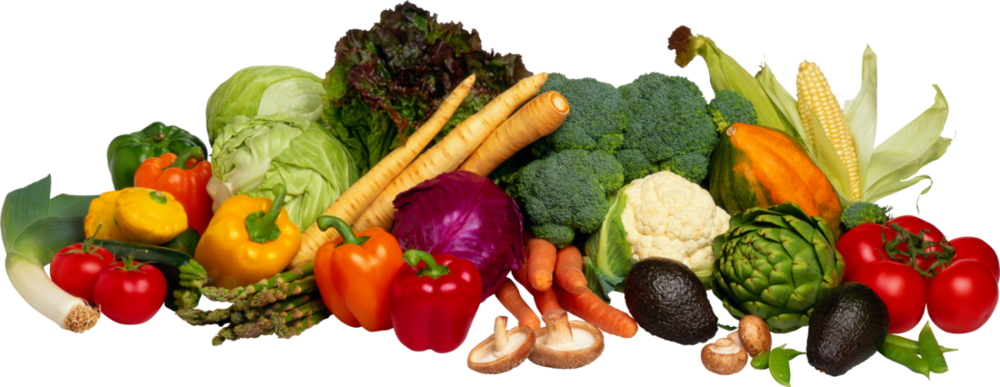 cropped-clip-art-vegetables-36.png