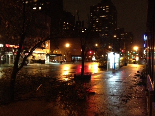 Downed trees the night of Sandy