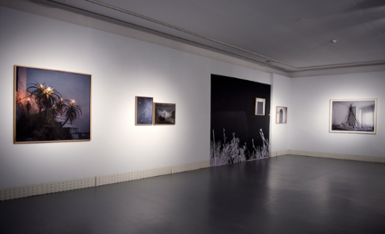 Installation view of Lola Guerrera.
