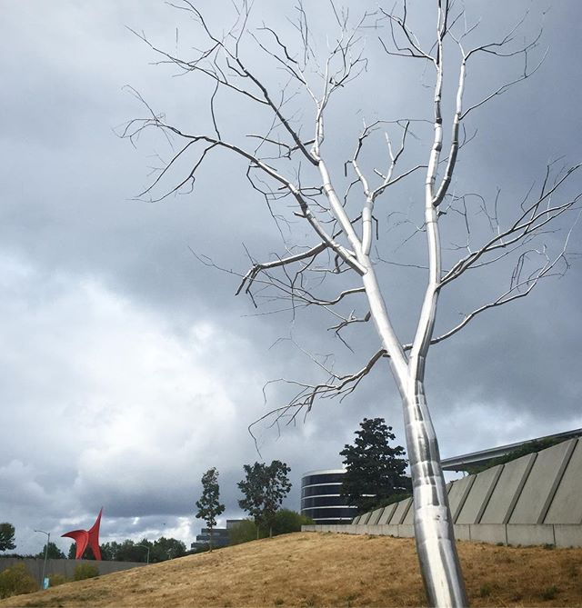 """Split"" polished stainless steel by Roxy Paine with ""The Eagle"" by Alexander Calder in the background at Olympic Sculpture Park. Great park. #art #publicsculpture #sculpture #seattleart #publicart"