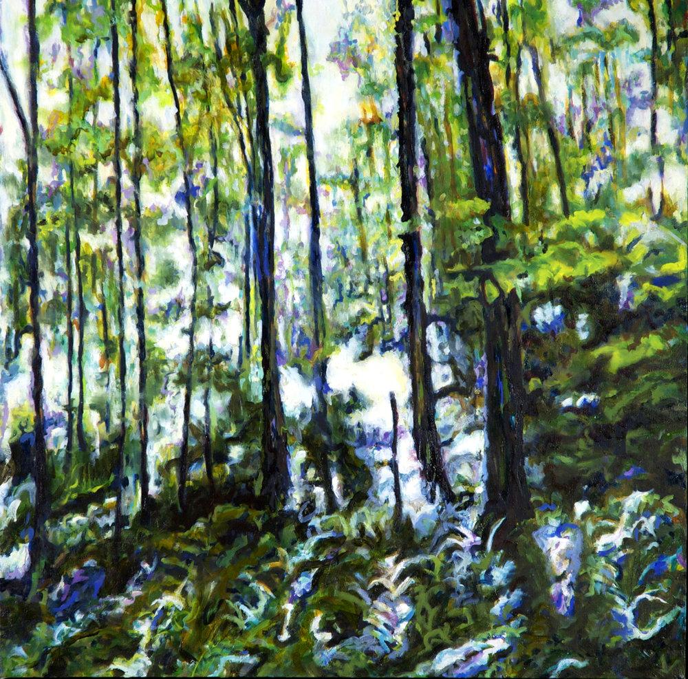 Backwoods 5: Summerlight