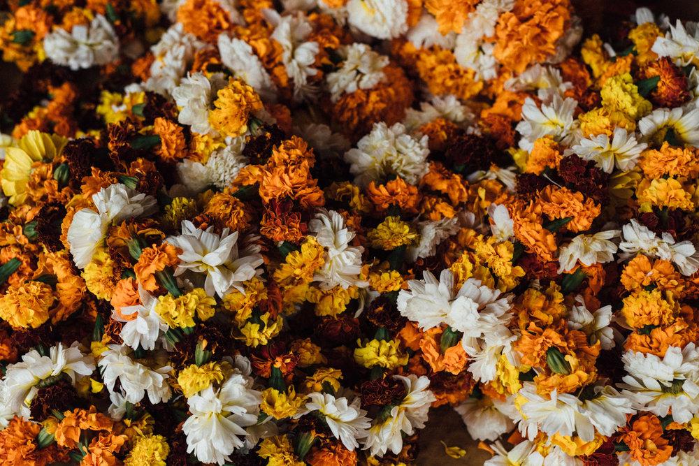 indiablog-024.jpg