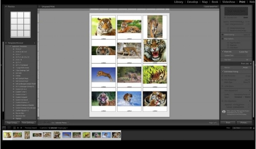 Creating Contact Sheets in Lightroom