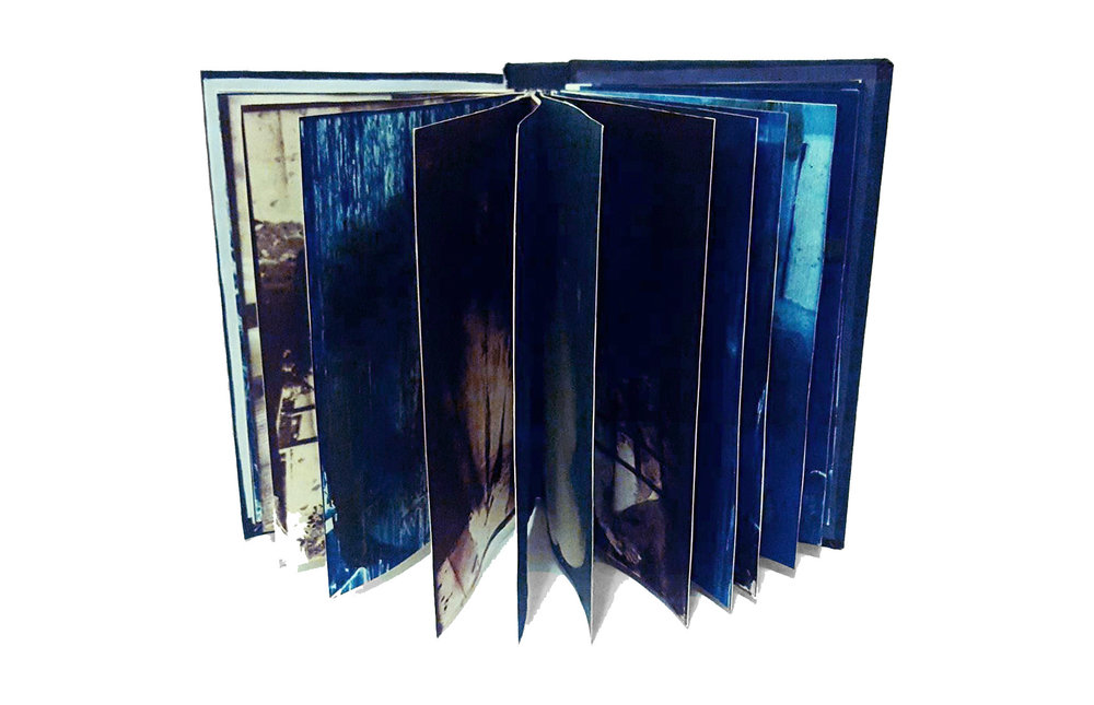 Blue and Brown Book.jpg