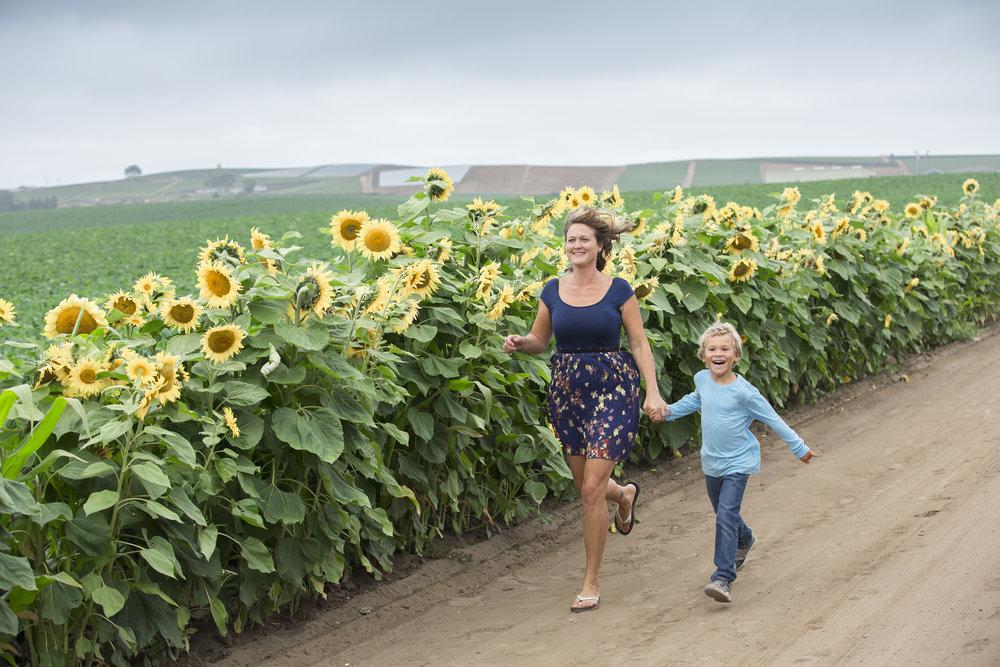 sunflowers2016IMG_0050.jpg