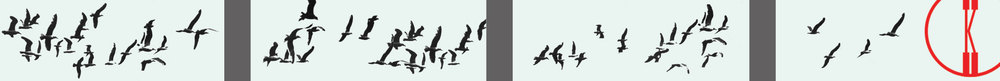 SM-Billboard_Elevations_Birds.jpg