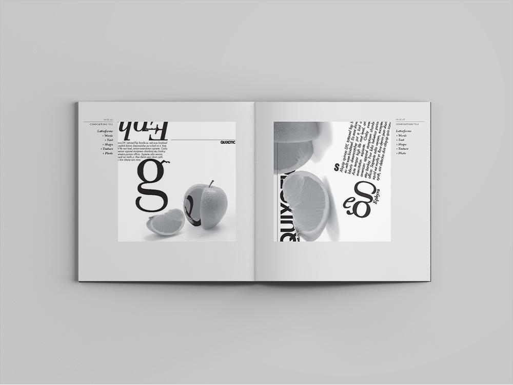 Book_49-50.jpg