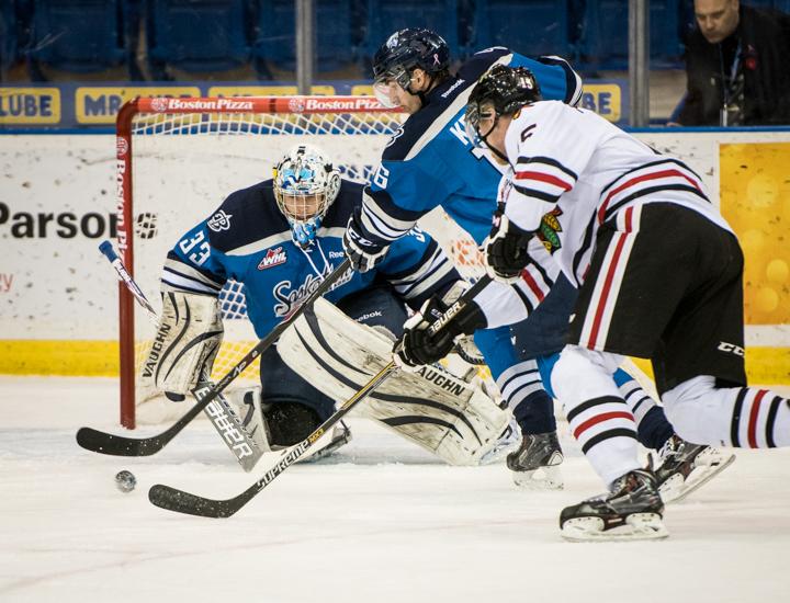 Saskatoon Blades Hockey