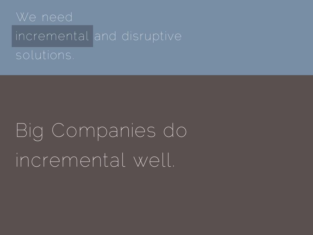 Big Companies do incremental well.