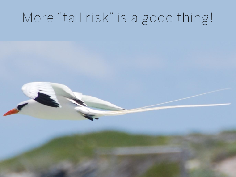 "More ""tail risk"" is a good thing!"