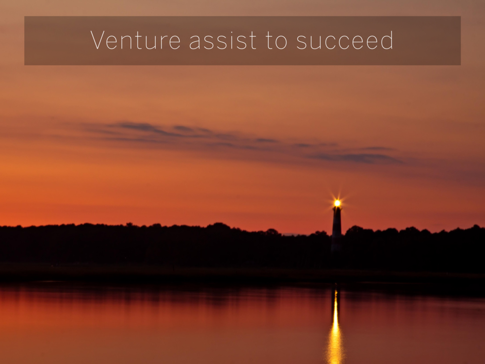 Venture assist to succeed