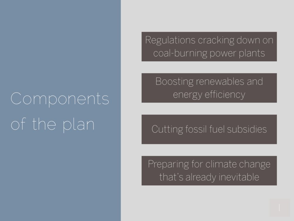 Components of the plan