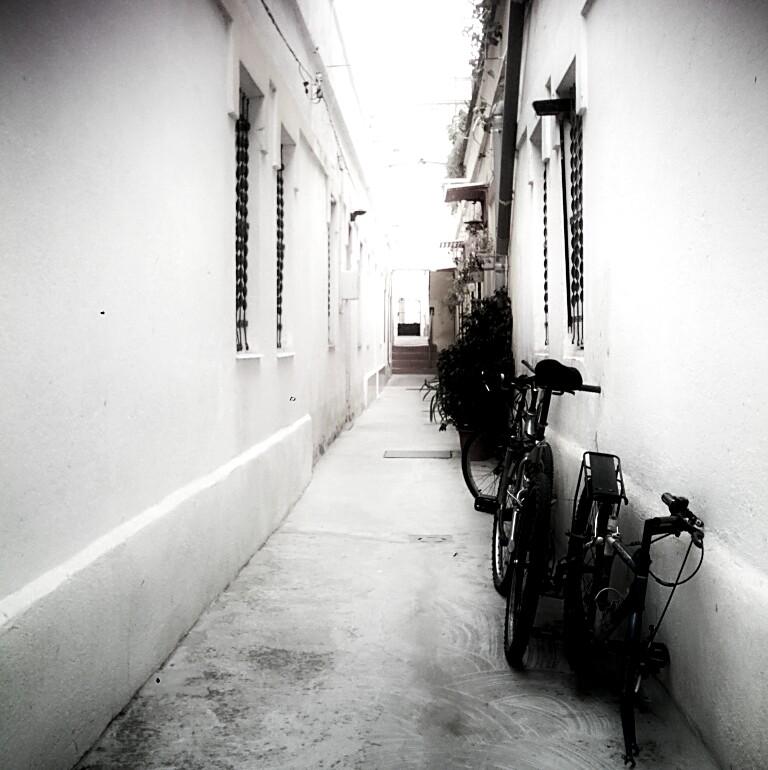 365 Day.167 Alley.jpg