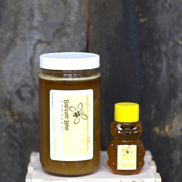 Raw Banner Bee honey and miniature honey bear
