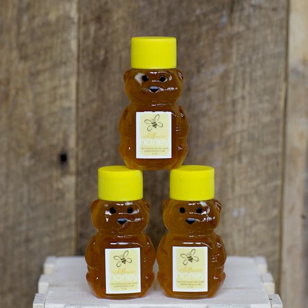 Banner Bee honey bear
