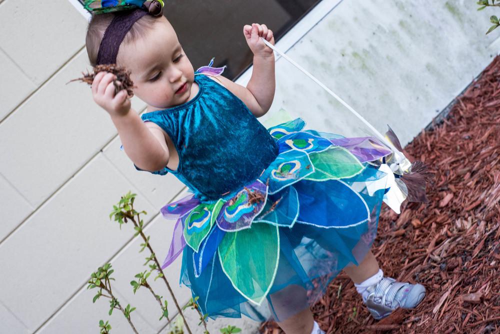 "Peacock Fairy ""Gardening"""
