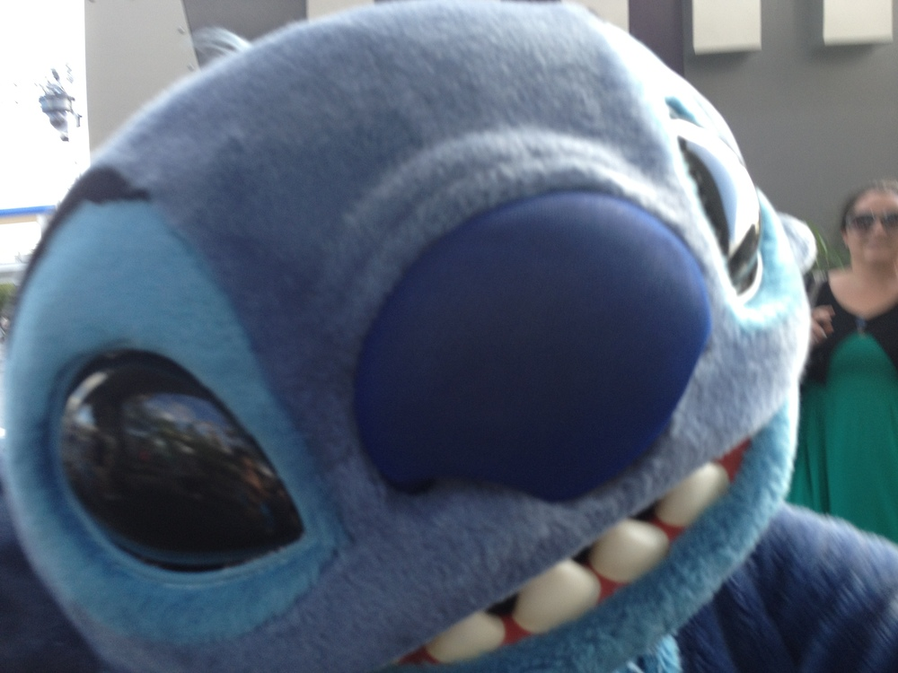 Stitch selfie.  Me, confused, in the background.