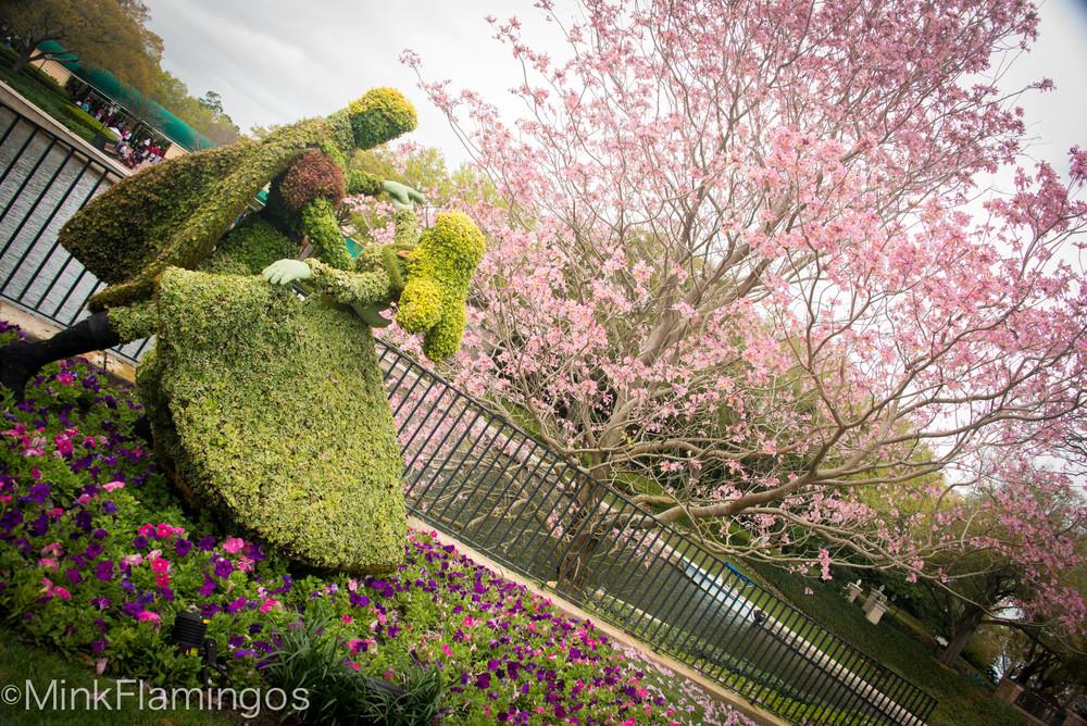 Aurora & Phillip- Flower & Garden @ Epcot