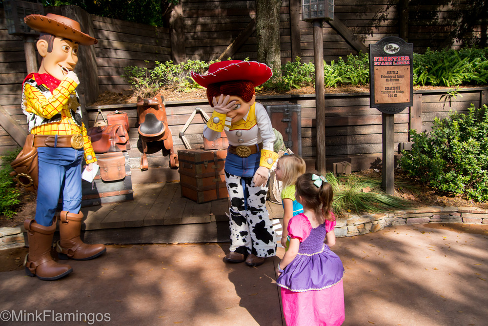 2016_1_1_MagicKingdom-67.jpg