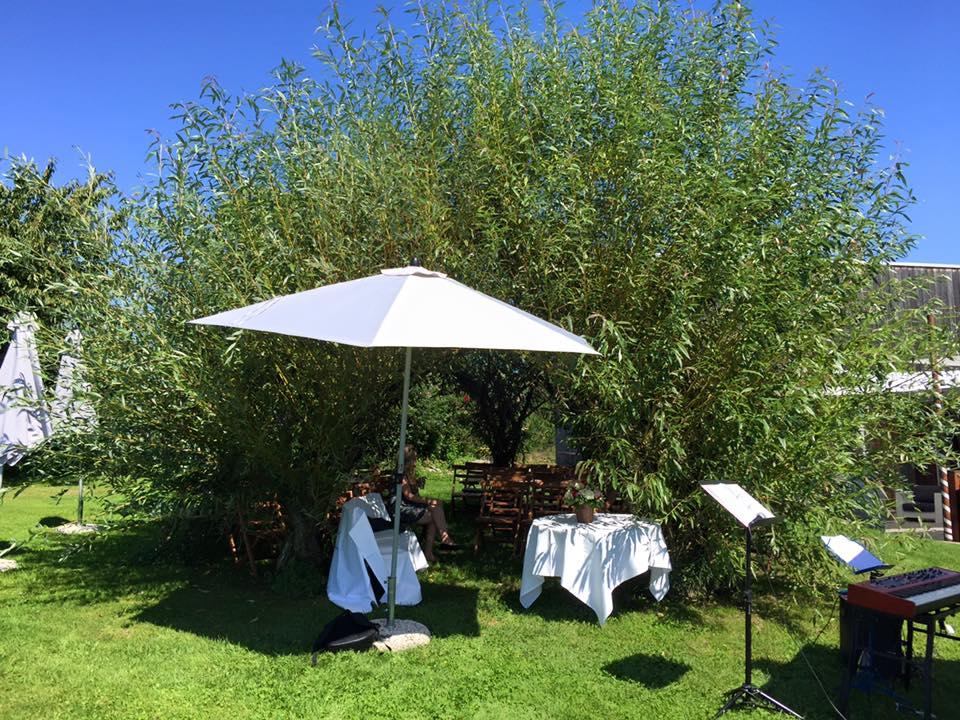 Ein wunderschöner Ort für eine freie Trauung im Kanton Zürich ist die  Moschti Stäfa . Unter dem Weiden-Pavillon findet gut 50 Leute Platz!