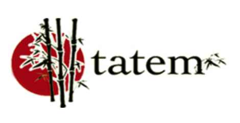 tatem acupuncture & wellness