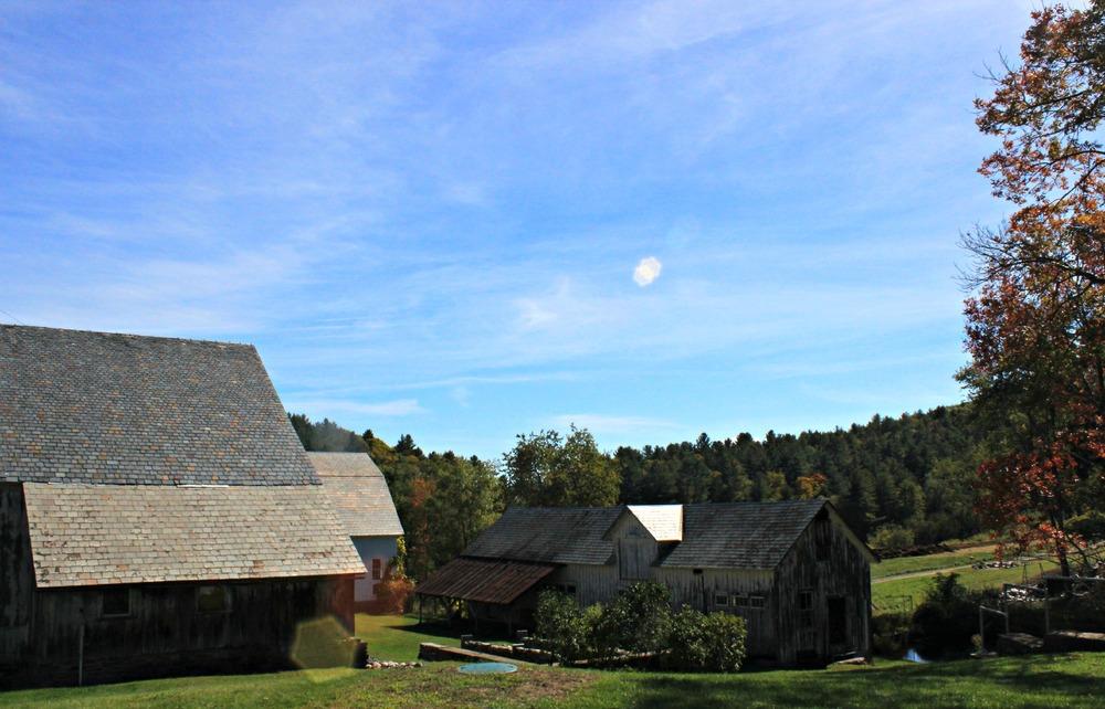 Scott Orchard Vermont