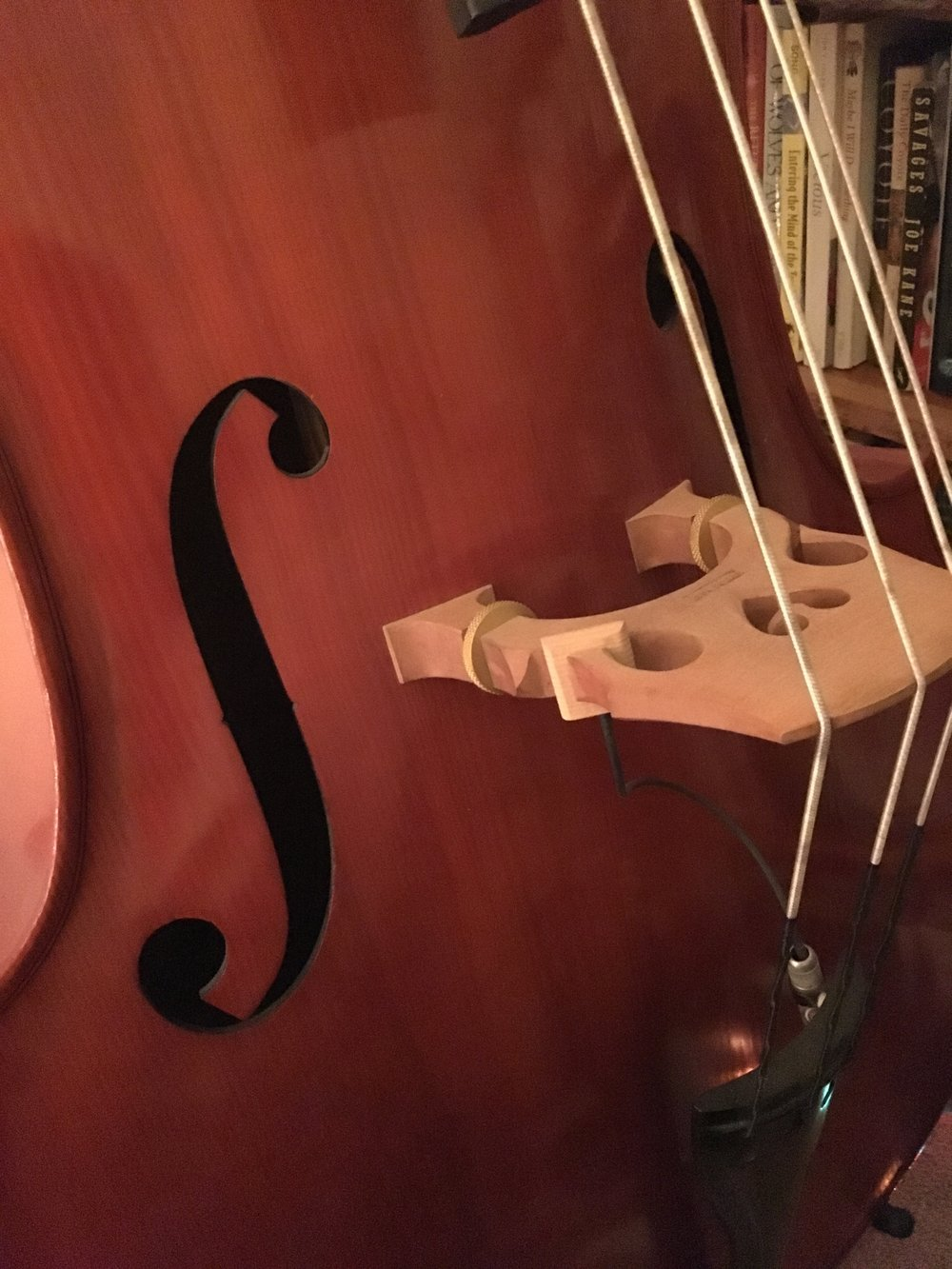Patrick's Double Bass