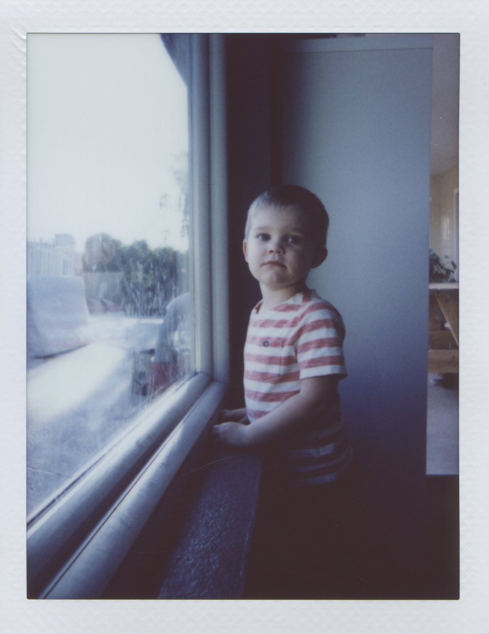 Rowan At The Window