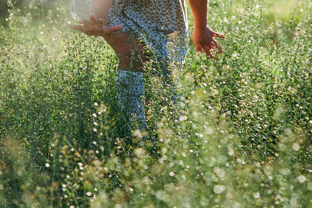 Vivian Runs Through Fields of Light
