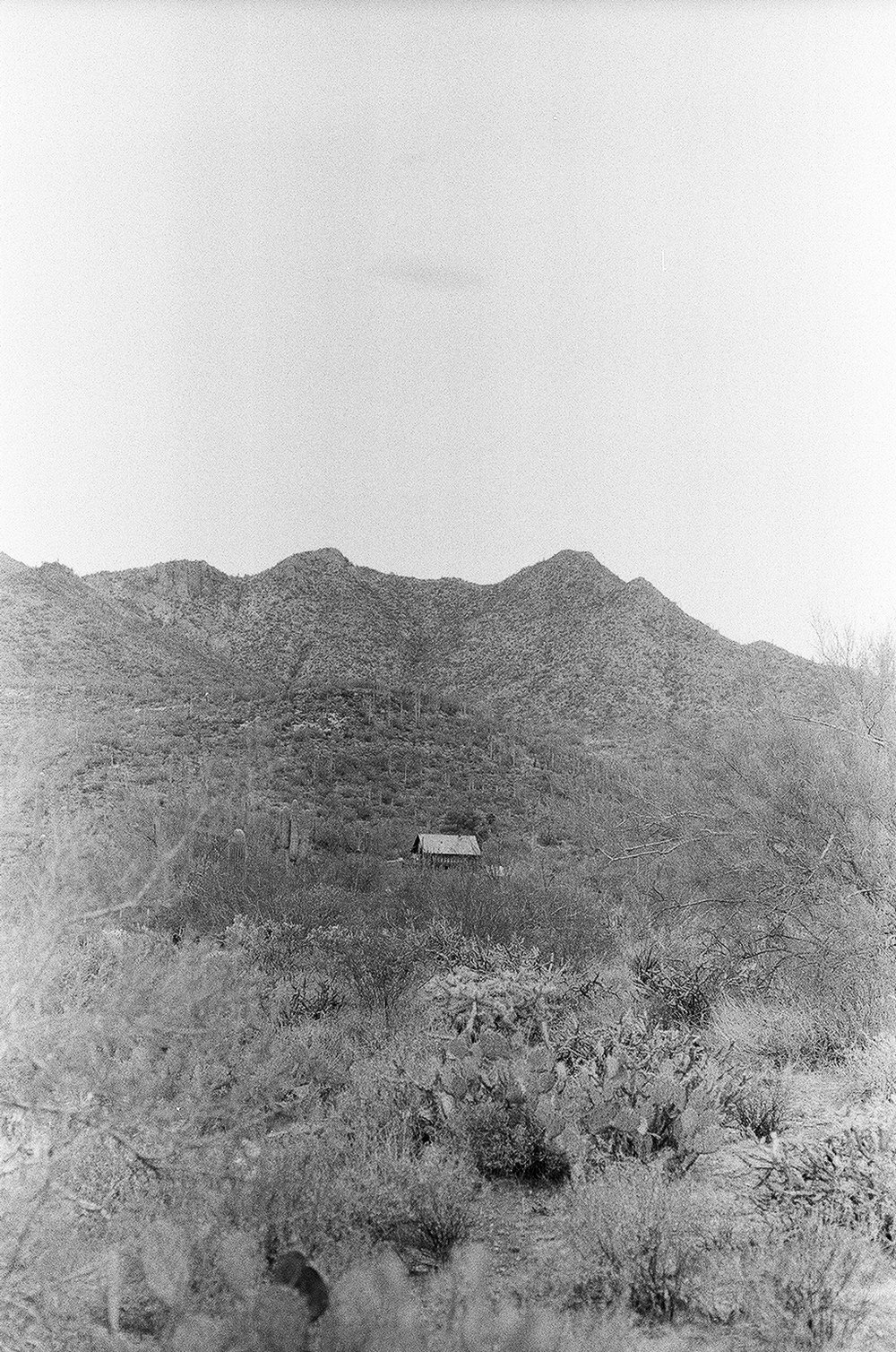 Lone Cabin On Spur Cross Ranch