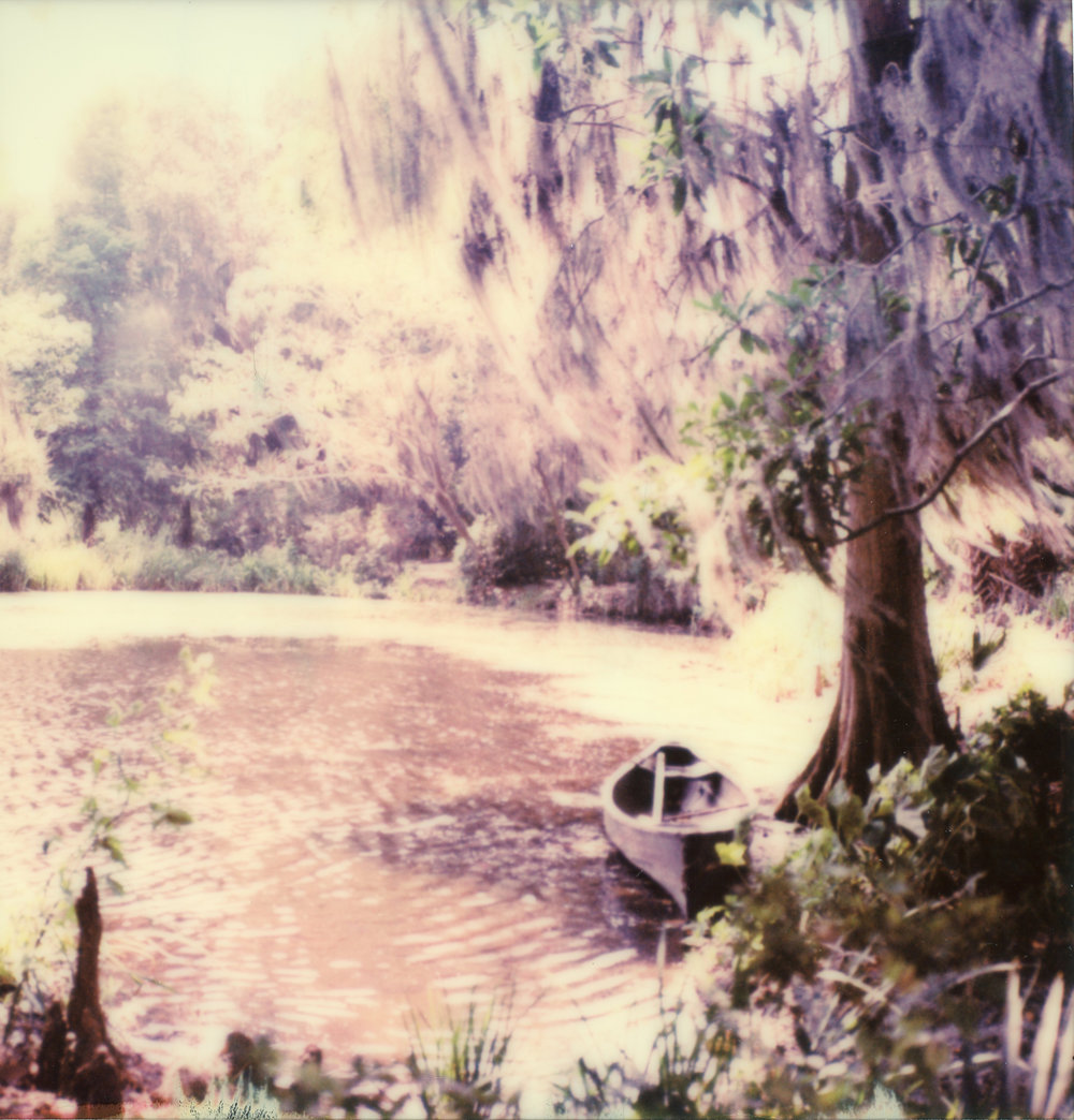Canoe On Water, Spanish Moss In the Wind