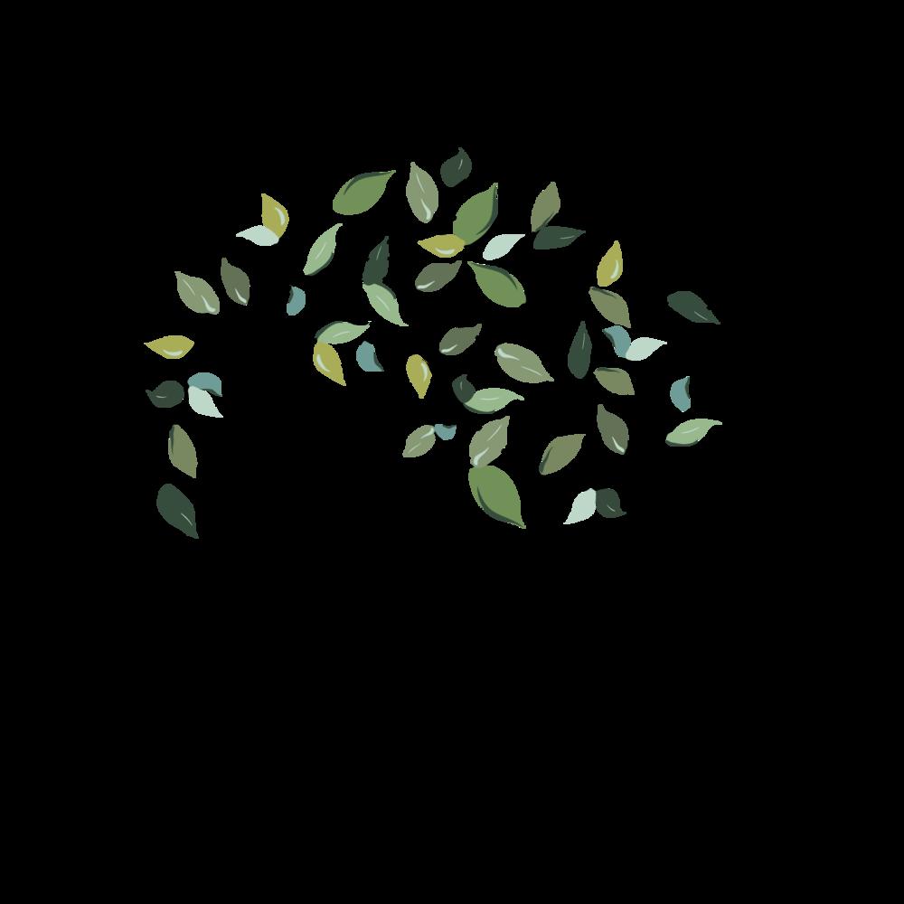 GBWS MEMBER Logo - Color PNG-01-01.png